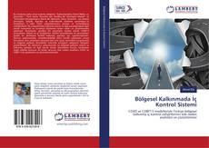 Buchcover von Bölgesel Kalkınmada İç Kontrol Sistemi