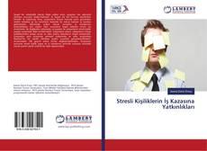 Bookcover of Stresli Kişiliklerin İş Kazasına Yatkınlıkları