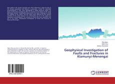 Copertina di Geophysical Investigation of Faults and Fractures in Kiamunyi-Menengai