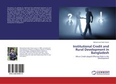 Bookcover of Institutional Credit and Rural Development in Bangladesh