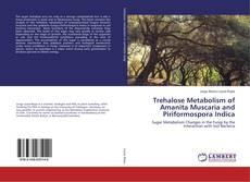 Обложка Trehalose Metabolism of Amanita Muscaria and Piriformospora Indica