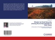 Bookcover of Shocks to Food Security among Rural Households in Ekiti State