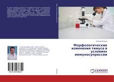 Portada del libro de Морфологические изменения тимуса в условиях иммуносупрессии