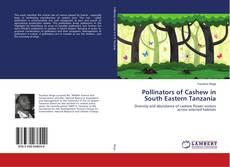 Bookcover of Pollinators of Cashew in South Eastern Tanzania