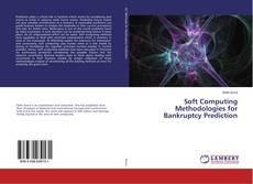 Обложка Soft Computing Methodologies for Bankruptcy Prediction