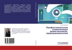 Bookcover of Профессиональная социализация ремесленников-предпринимателей