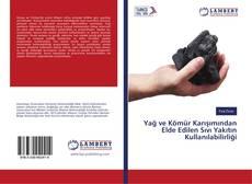 Bookcover of Yağ ve Kömür Karışımından Elde Edilen Sıvı Yakıtın Kullanılabilirliği