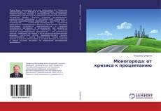 Моногорода: от кризиса к процветанию的封面