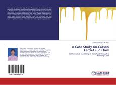 Bookcover of A Case Study on Casson Ferro-Fluid Flow