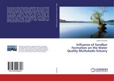 Copertina di Influence of Sandbar Formation on the Water Quality Muttukadu Estuary