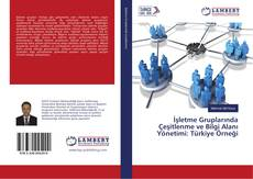 Couverture de İşletme Gruplarında Çeşitlenme ve Bilgi Alanı Yönetimi: Türkiye Örneği