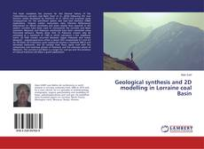 Bookcover of Geological synthesis and 2D modelling in Lorraine coal Basin