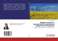 Эффективность матричного комплекса энергетики Украины的封面