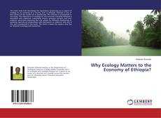 Borítókép a  Why Ecology Matters to the Economy of Ethiopia? - hoz