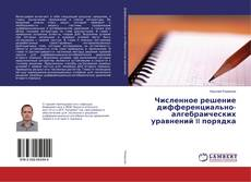 Buchcover von Численное решение дифференциально-алгебраических уравнений II порядка