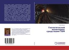 Buchcover von Геологический мониторинг средствами ТБМ