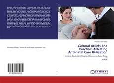 Bookcover of Cultural Beliefs and Practices Affecting Antenatal Care Utilization