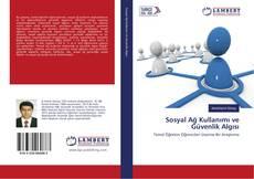 Sosyal Ağ Kullanımı ve Güvenlik Algısı kitap kapağı