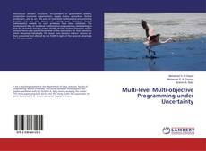 Обложка Multi-level Multi-objective Programming under Uncertainty