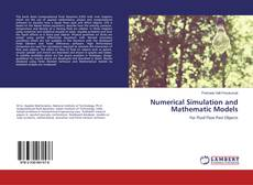 Bookcover of Numerical Simulation and Mathematic Models