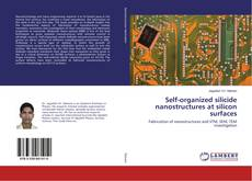 Bookcover of Self-organized silicide nanostructures at silicon surfaces