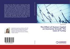 The Effect of Human Capital on Economic Growth: The Case of Turkey kitap kapağı
