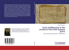 Bookcover of Early childbearing in the context of the child support grant