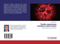 Трубы давления ядерных реакторов kitap kapağı