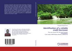 Bookcover of Identification of a reliable credit borrower