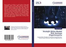 Stratejik Atılım Modeli Risk Sermaye Organizasyonu kitap kapağı