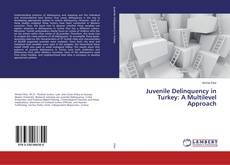 Bookcover of Juvenile Delinquency in Turkey: A Multilevel Approach