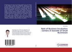 Role of Business Incubation Centers in Growth of Small Businesses kitap kapağı