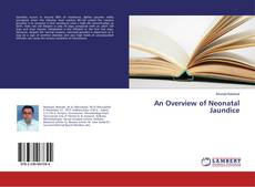 Bookcover of An Overview of Neonatal Jaundice