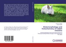 Bookcover of Histomorphology and histochemstry of rabbit intestine