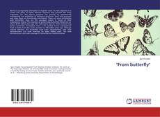 """""""From butterfly""""的封面"""