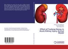 Обложка Effect of Tualang Honey in Acute Kidney Injury Animal Model