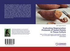 Couverture de Evaluating Regeneration Protocols of Sweet Potato in Tissue Culture