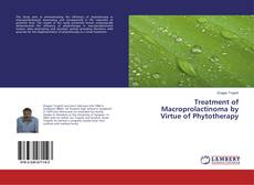 Bookcover of Treatment of Macroprolactinoma by Virtue of Phytotherapy