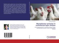 Bookcover of Mycoplasma synoviae in commercial layer chicken