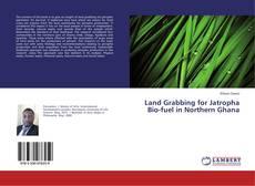 Bookcover of Land Grabbing for Jatropha Bio-fuel in Northern Ghana
