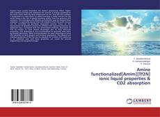 Amine functionalized[Amim][Tf2N] ionic liquid properties & CO2 absorption的封面