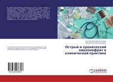 Capa do livro de Острый и хронический пиелонефрит в клинической практике