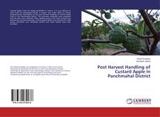 Bookcover of Post Harvest Handling of Custard Apple in Panchmahal District