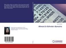Capa do livro de Almost b-Schreier domains