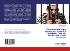 Buchcover von Предупреждение правонарушений в тюрьмах: теория, право, практика