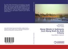 Heavy Metals in Sediments Core Along Shatt AL-Arab Estuary kitap kapağı