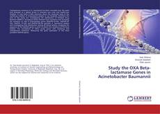 Bookcover of Study the OXA Beta-lactamase Genes in Acinetobacter Baumannii