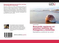 Portada del libro de Buscando agujeros en conchas marinas de Patagonia y Antártida