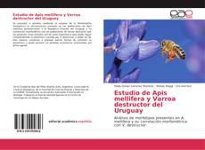 Bookcover of Estudio de Apis mellifera y Varroa destructor del Uruguay