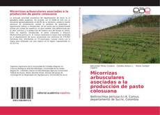 Portada del libro de Micorrizas arbusculares asociadas a la producción de pasto colosuana